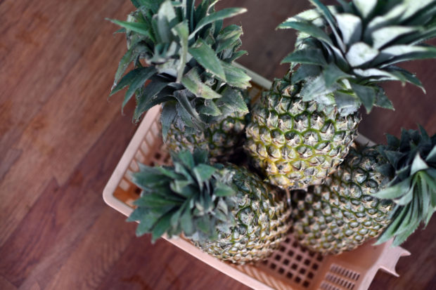 pine apple in basket, free indian stock photos