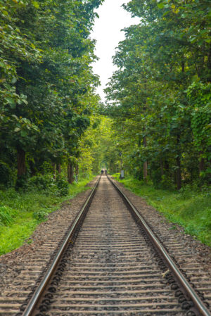 indian railway tracks, somewhere in kerala, download free indian travel and stock photos